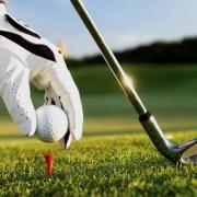 golf_na_rabochij_stol-5.jpg