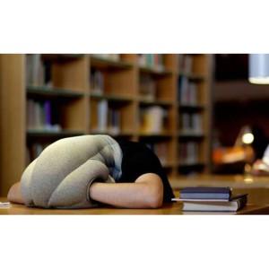 Подушка офисная Страус