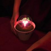 Светильник - ночник LYL I Love You